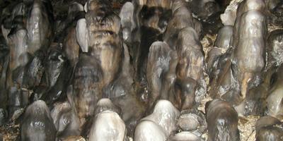 Cementerio, Cueva de Valporquero