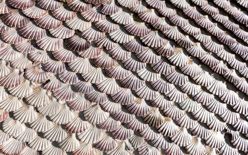 Conchas de la fachada de ermita la toja