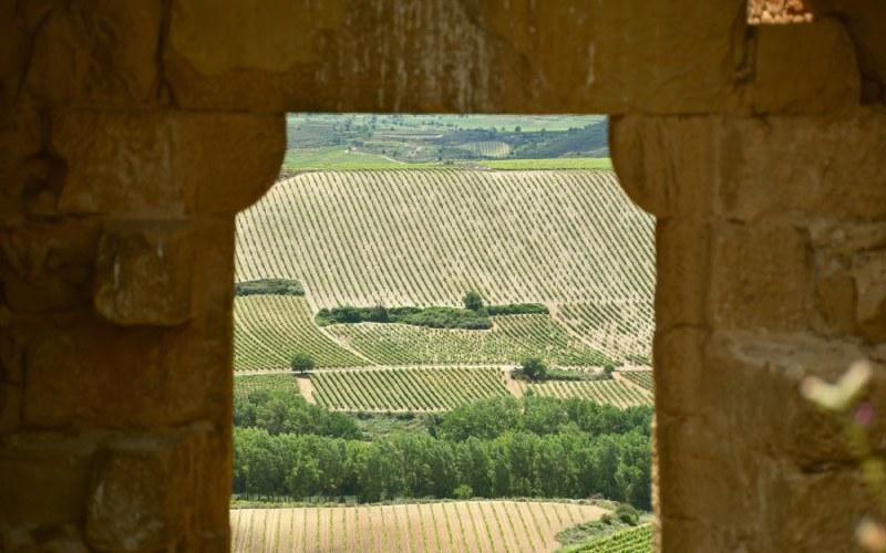 Puerta principal del castillo de Davalillo