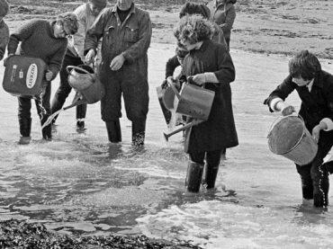 El desastre ecológico que propició la protección de los mares