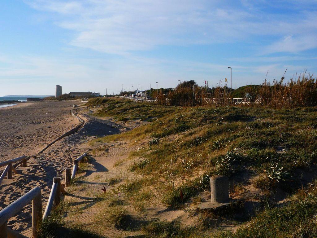 Playa de El Palmar en El Palmar de Vejer