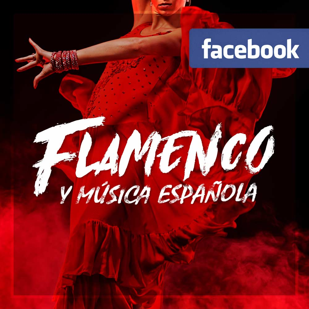 logo flamenco