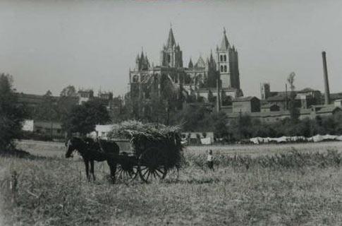 fotografia antigua catedral leon