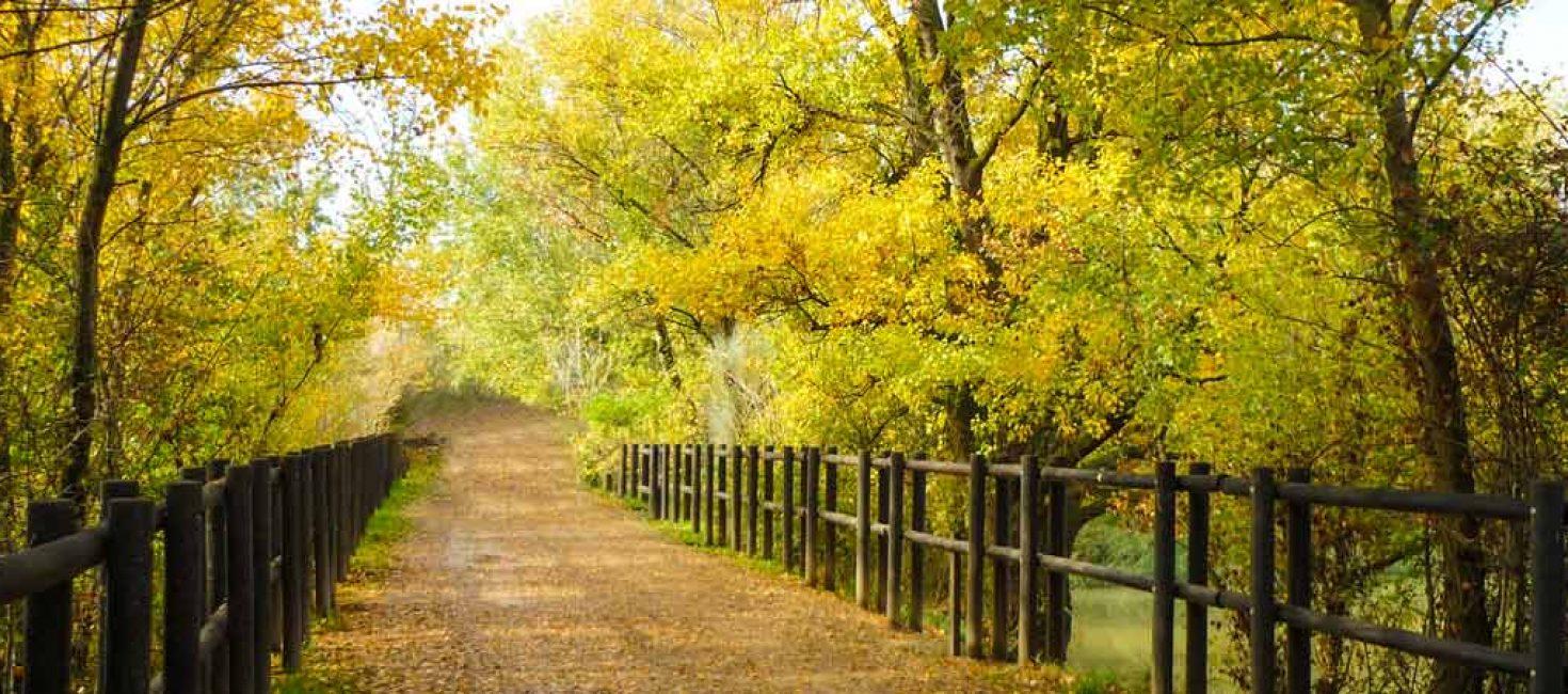 Reserva Natural de los Galachos del Ebro