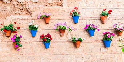 macetas en las paredes de las casas de Iznájar