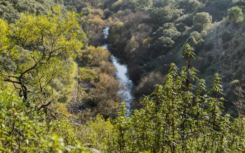El Guadarrama desde la presa de El Gascón