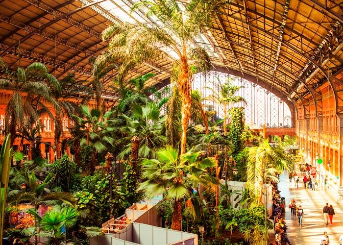 jardin botanico atocha