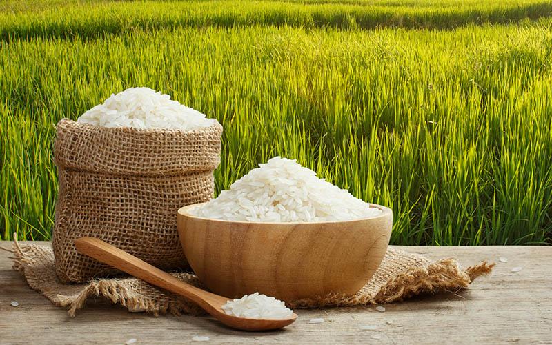 imagen_alimentos_arroz2