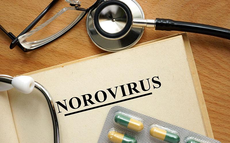 imagen_alimentos_norovirus
