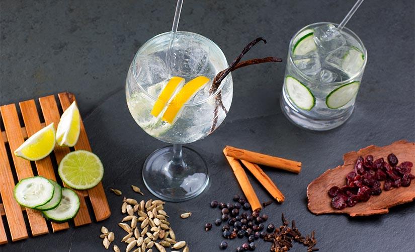 taller gin tonics