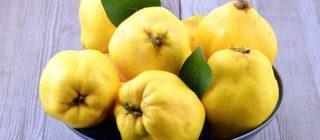 membrillos, típico alimento del veranillo de San Miguel