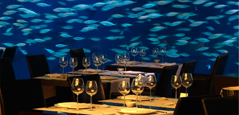 restaurantes con vistas oceanografico valencia