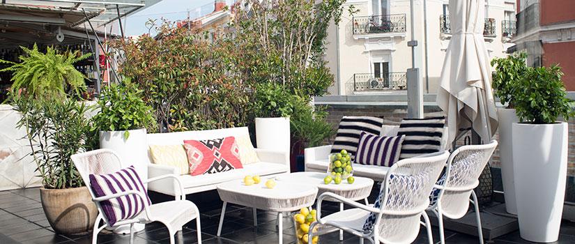 terrazas madrid cocina san anton