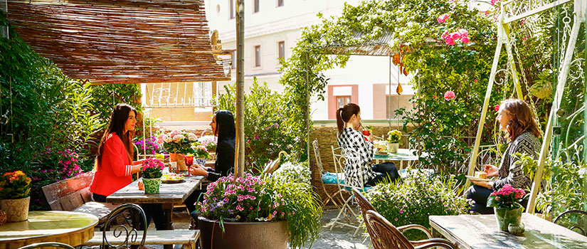 terrazas madrid jardin salvador bachiller