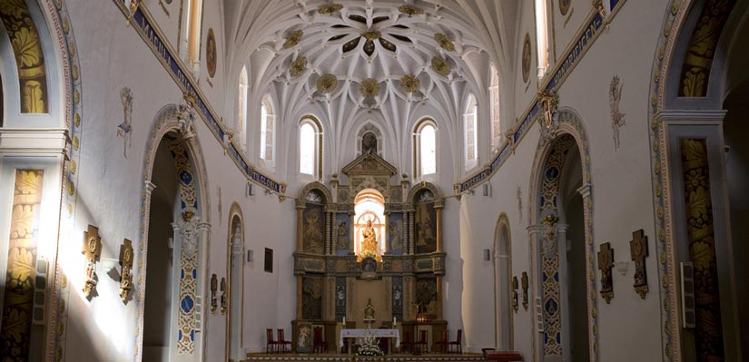 imagen_blog_viajes_monasterios_aragon_olivar