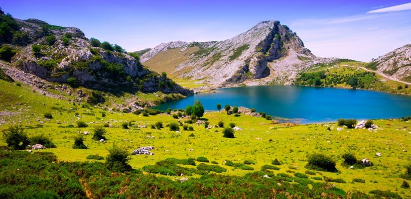 picnic parques naturales picos europa