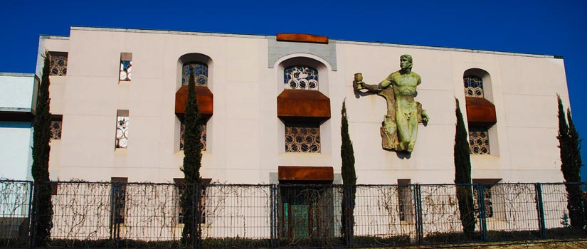 bodega museo ontanon