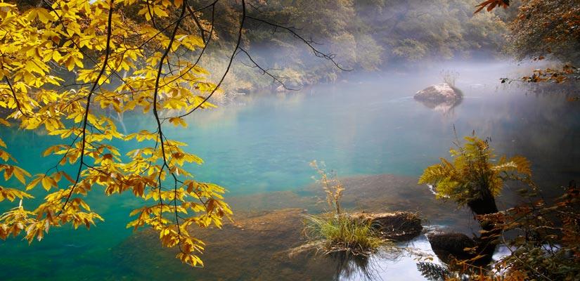 imagen_blog_viajes_bosques-en-otoño_fragas-de-eume_BI