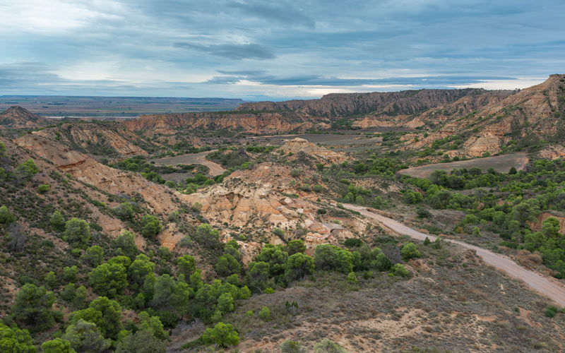 Desierto de Monegros