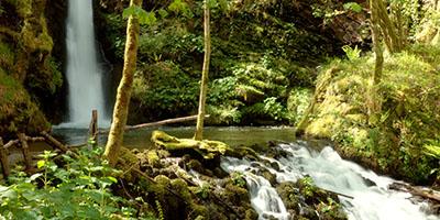 Cascada en un paisaje de Fonsagrada