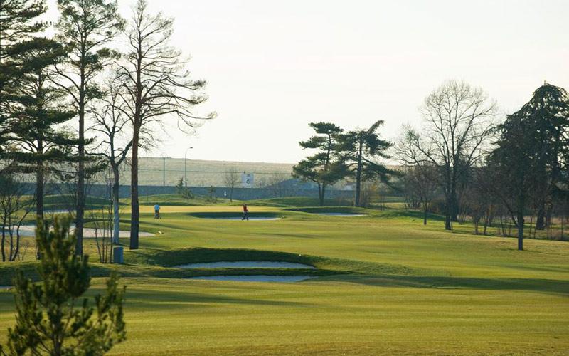 faisanera golf