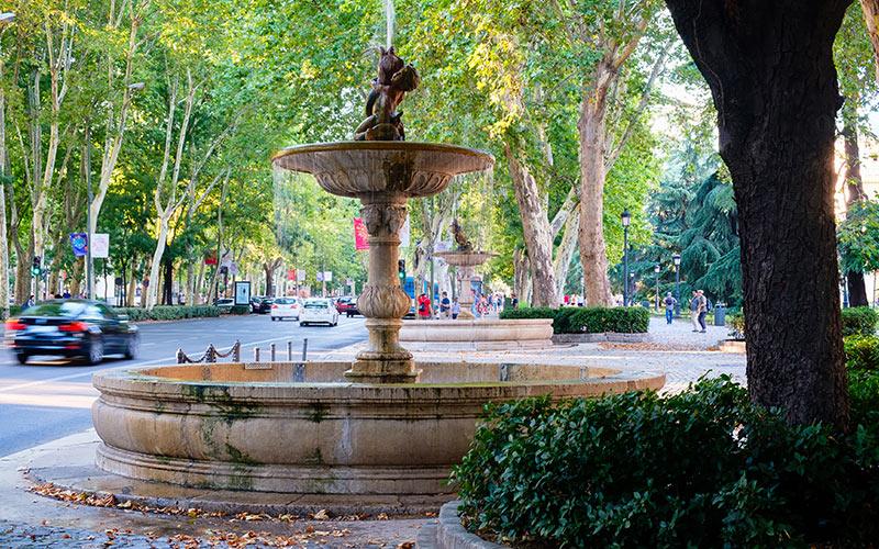 Planes gratis en Madrid. Paseo del Prado