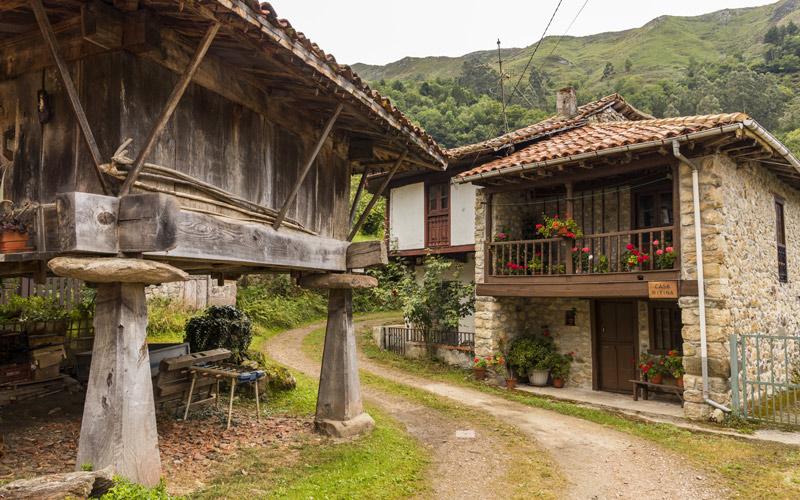 Espinaredo en Asturias