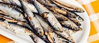 sardinas chipiona