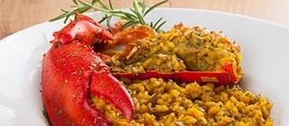 arroz langosta porto cristo