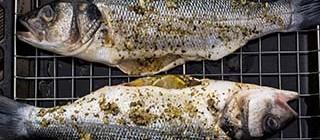 comer pescado cuellar