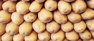 patata tarragona