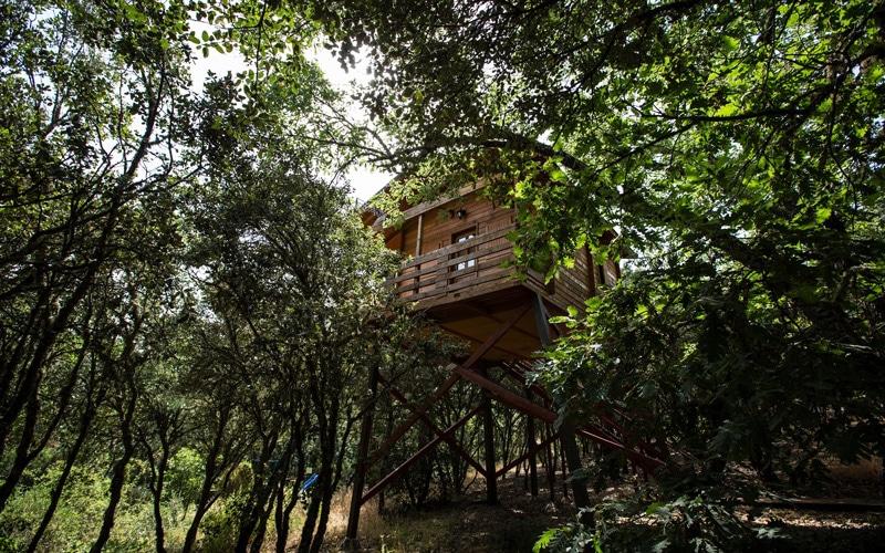 5 casas rurales para dormir en una caba a colgada de un rbol - Casa arbol zeanuri ...