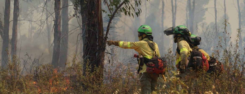 Incendio Huelva e imagen de INFOCA