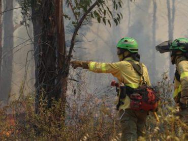 Los incendios siguen arrasando en Huelva, Murcia y Cáceres