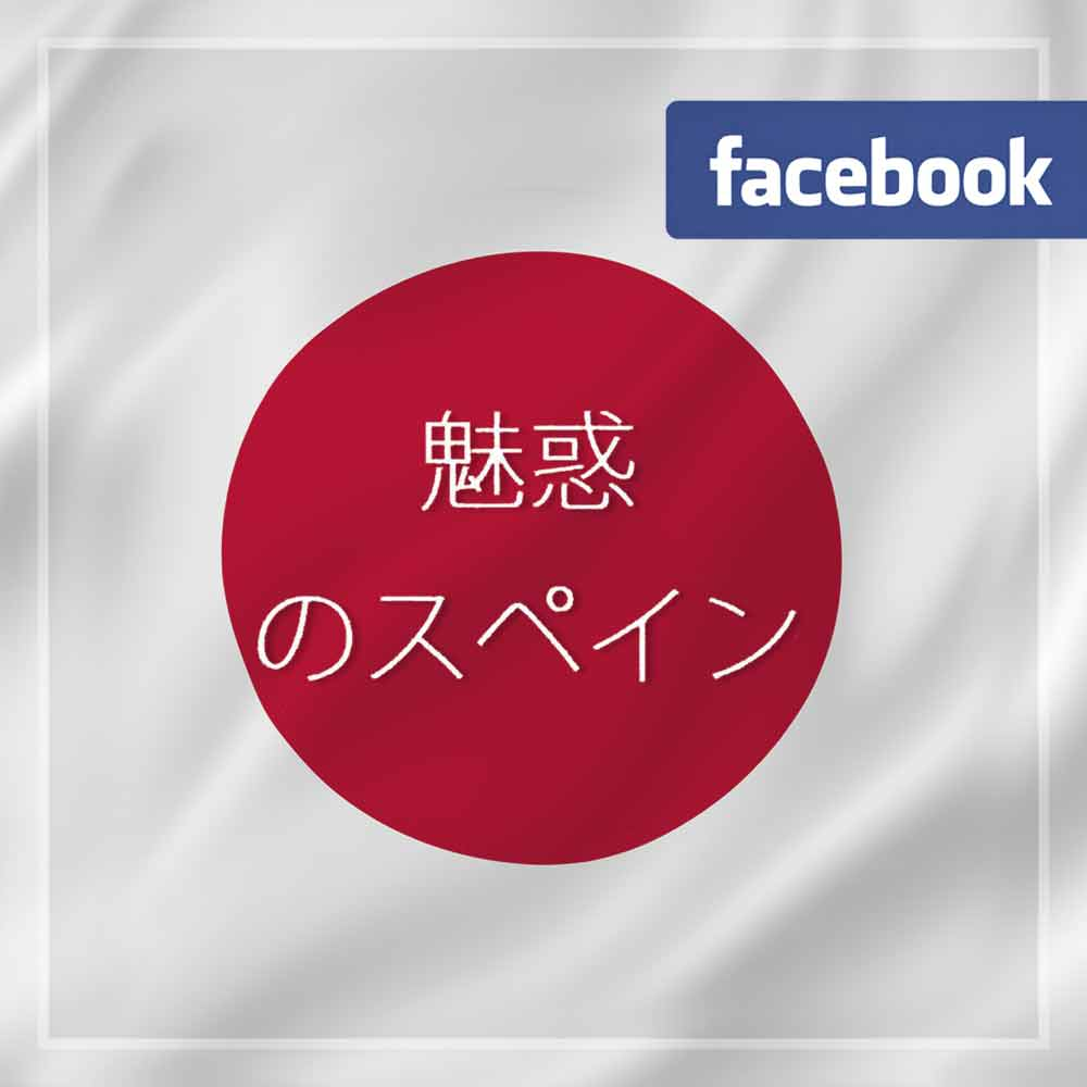 logo japon fb