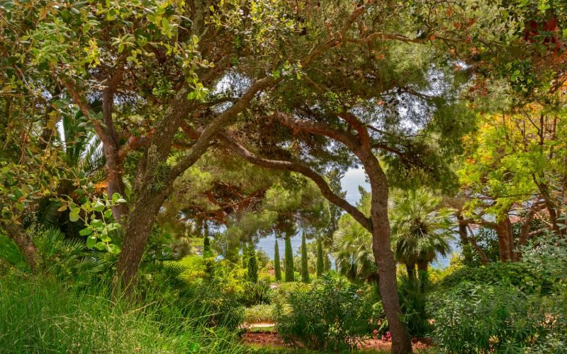 La vegetación del jardín botánico de Marimurtra es muy variada