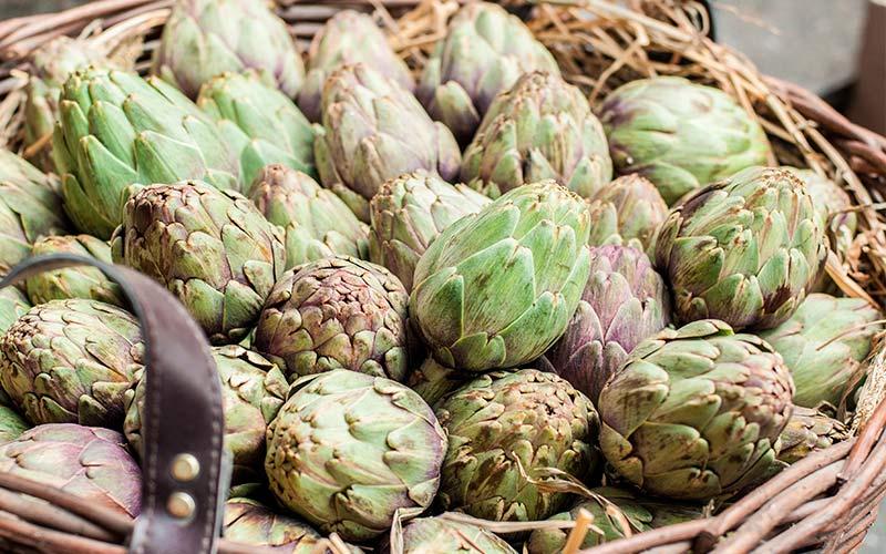 Jornadas de la Verdura de Tudela: alcachofas