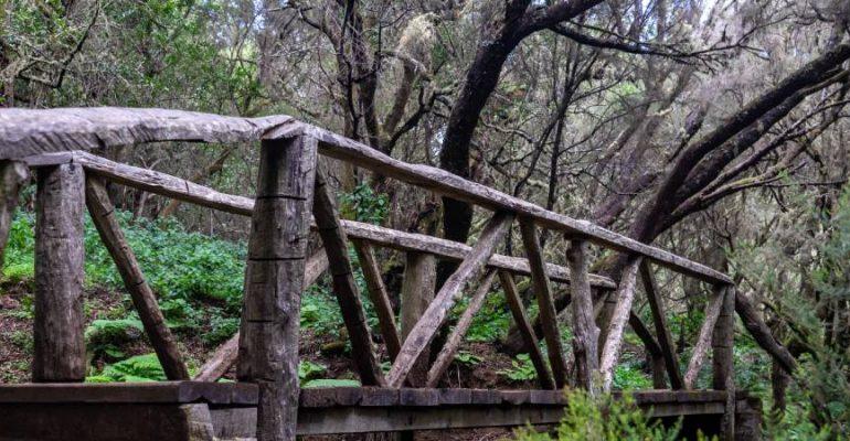 La Llanía, una ruta por los contrastes paisajísticos de El Hierro