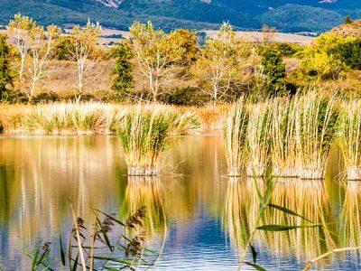 Lagunas de Laguardia