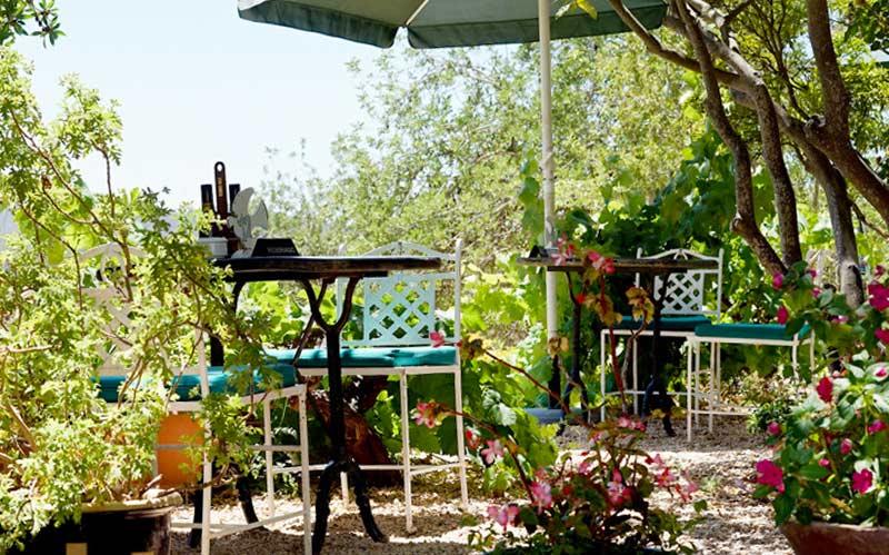 Mejores terrazas de España: La Paloma (Ibiza)