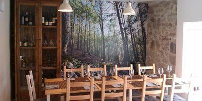 comer plenzia restaurante palmeras