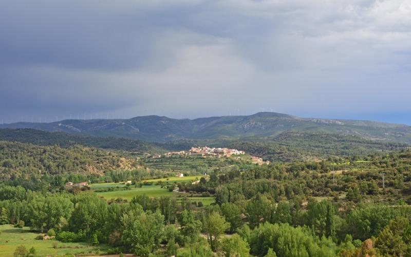 Vegetación del Maestrazgo entre Teruel y Castellón geoparque