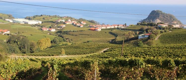 vinos chacoli