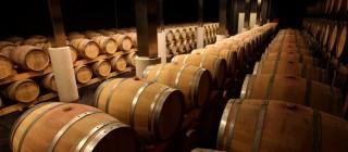 vinos montesa