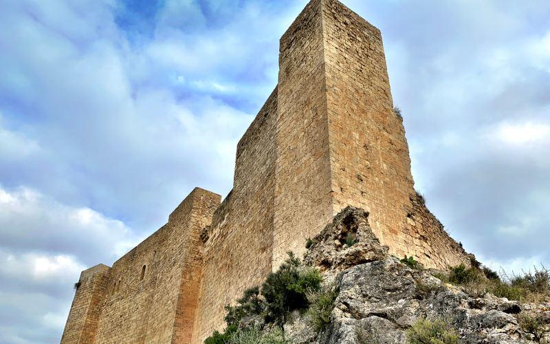 Fragmento del muro de la fortaleza