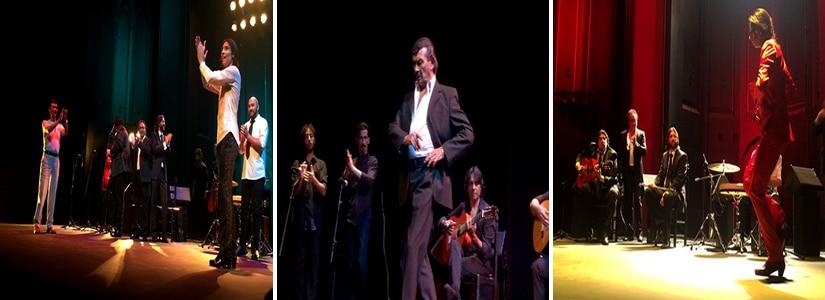 espectaculo flamenco mon yiyo