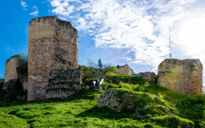 Vista del castillo de Morón de la Frontera sobre un cerro verdoso