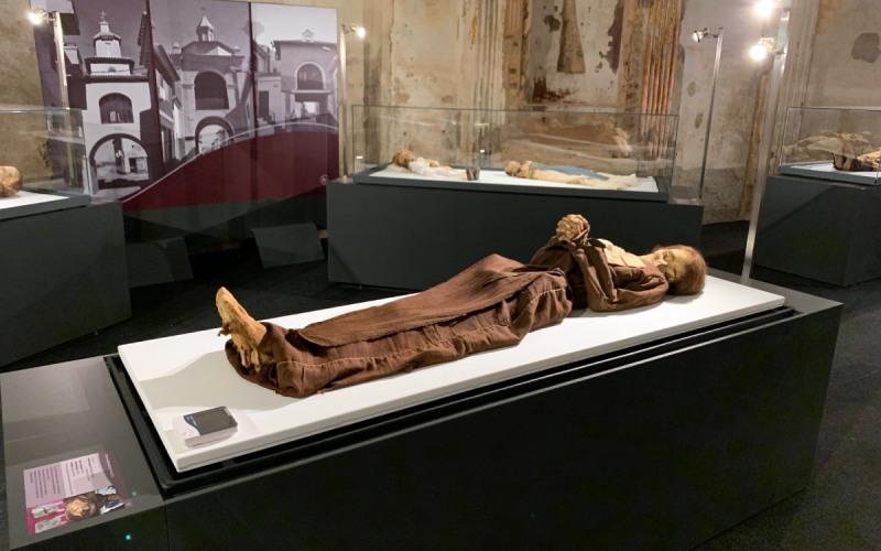 Lady, una de las momias de Quinto