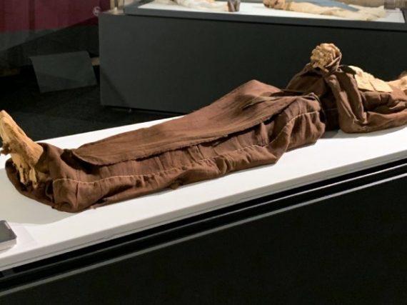 El museo de las momias de Quinto, una macabra muestra única en España
