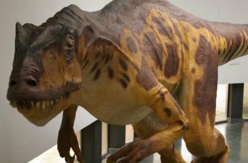 Interior del Museo de Dinosaurios, uno de los lugares que ver en Salas de los Infantes